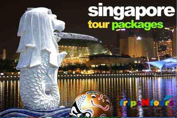 singpore-tour-tripsntours-02-600x400