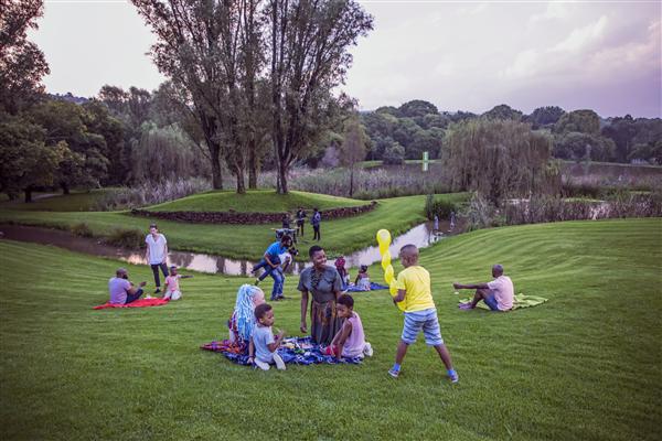 People having picnics at Nirox Sculpture Park